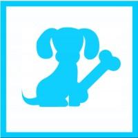 Junghunde (JuHu 2)