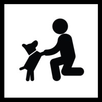 Familienhund – spielend Freunde werden - auf Anfrage