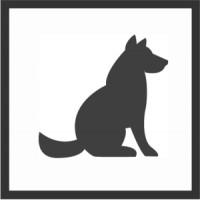 Hundesenior - alter Hund, na und!?   -   Auf Anfrage